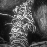 """""""Zwierzę"""" - węgiel 1989r 70x100 cm"""
