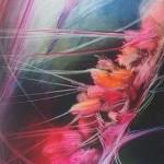 """""""Roślina"""" - fotografia 1995r 30x40 cm"""